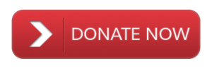 donate-button