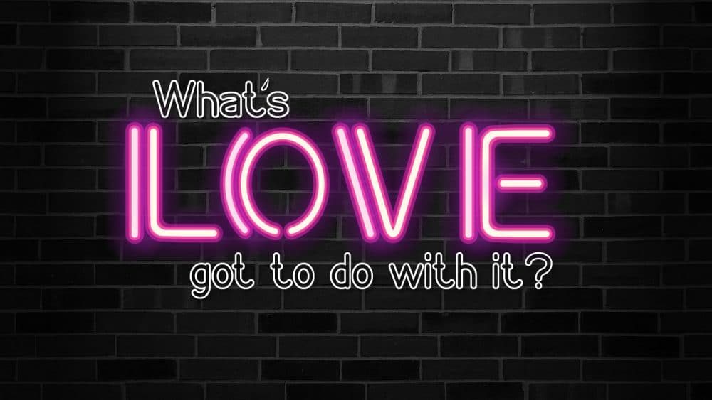 What\'s Love Got to do With It?